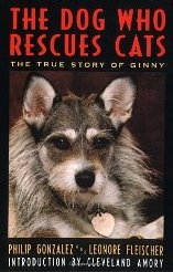 Ginny, the Dog Who Rescued Cats